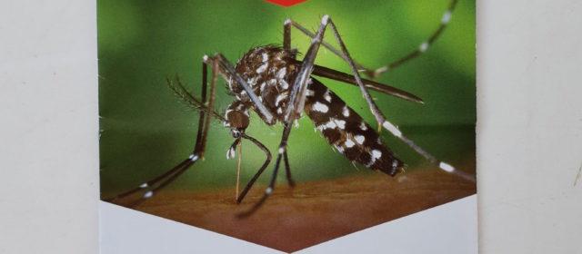 Charla sobre el mosquito tigre