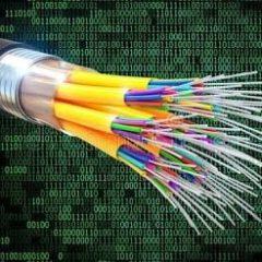 Plataforma por la fibra Óptica en la dehesa del Saler